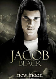 Affiche-du-film-twilight-jacob jpg 500x630 q95