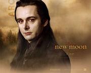 New-moon-wallpaper-aro