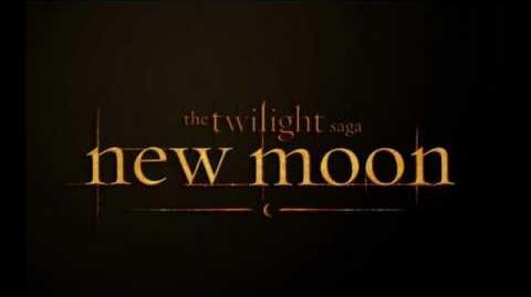 New Moon OST - Dreamcatcher - Alexandre Desplat