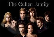 Cullen!!