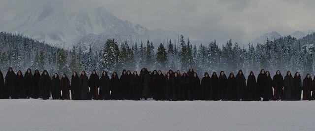 File:Volturi guard 2.JPG