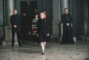 In the Volturi castle