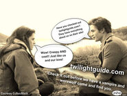 TwilightGuidePicture2