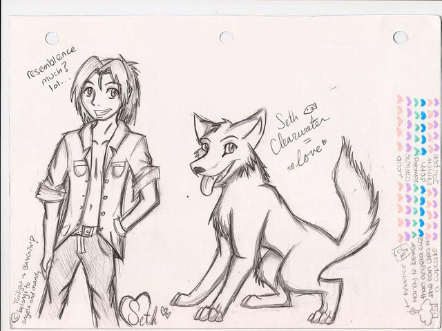 File:Seth Clearwater WOLFIE by Wolf Spirit14.jpg