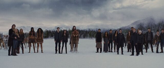 File:The Cullens and their witnesses.JPG