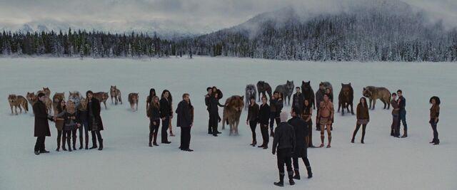 File:Cullens-witnesses-end.jpg