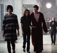 NM- Into The Lair Of The Volturi