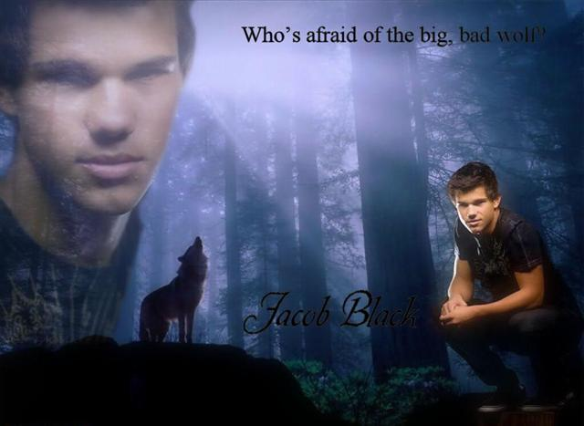 File:Jacob-Black-Desktop-1.jpeg