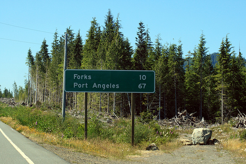 File:Forks-washington-twilight.jpg