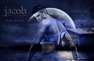 Twilight-1209025