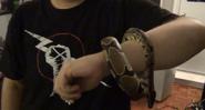 Jack Around Matt's Arm