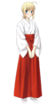 Saber Miko clothing.png