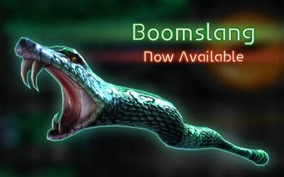 0205-Boomslang