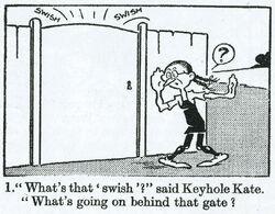 Keykate