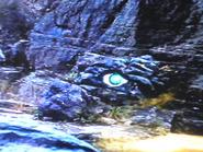 Annon eye