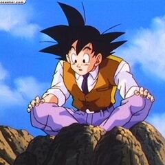 WAIT if you're marrying my wife, does that mean BULMA is available??