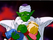 Piccolo the Softie