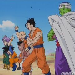 Z Fighters in the opening