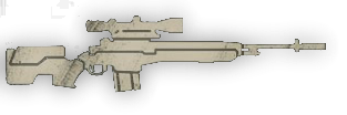 File:M14 Custom.png