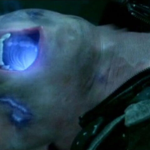 Rigel dying from uv radiation.