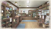 Store VC2
