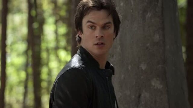 File:6X10-120-Damon.jpg