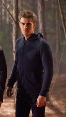 File:2x13 Stefan Salvatore Daddy Issues.png