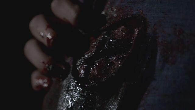 File:The-Vampire-Diaries-3x17-Break-On-Through-HD-Screencaps-meredith-sulez-fell-30000096-1280-720.jpg