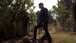 Normal TheOriginals202-0658