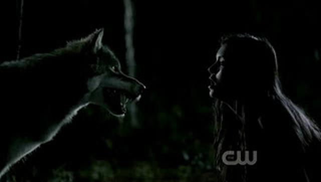 File:The Vampire Diaries S03E02 HDTV XviD-ASAP-6.jpg