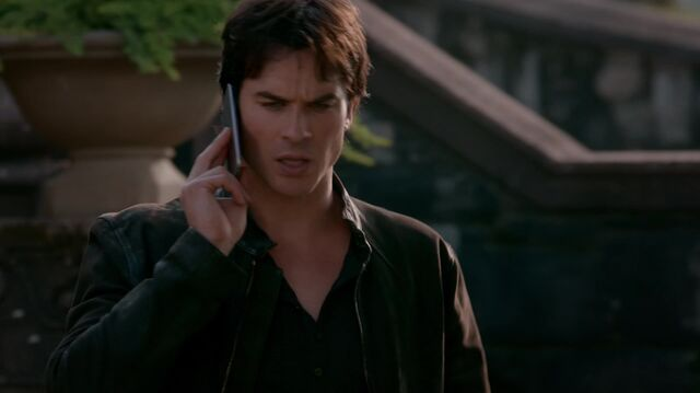 File:714-046-Damon.jpg