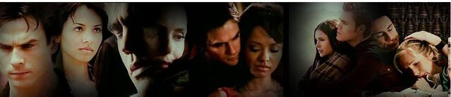 File:Banner-3-stelena-bamon-and-forwood-26017204-1082-234.jpg