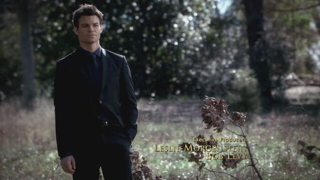 File:The-Vampire-Diaries-3x13-Bringing-Out-the-Dead-HD-Screencaps-elijah-28811750-1280-720.jpg