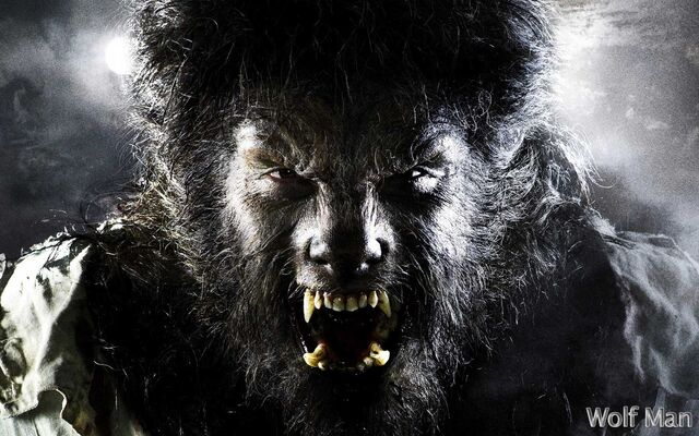 File:The-Wolfman-werewolves-32243434-1680-1050.jpg