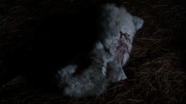 File:A unknown werewolf killed by Rebekah Mikaelson (vampire) (TVD & TO).png