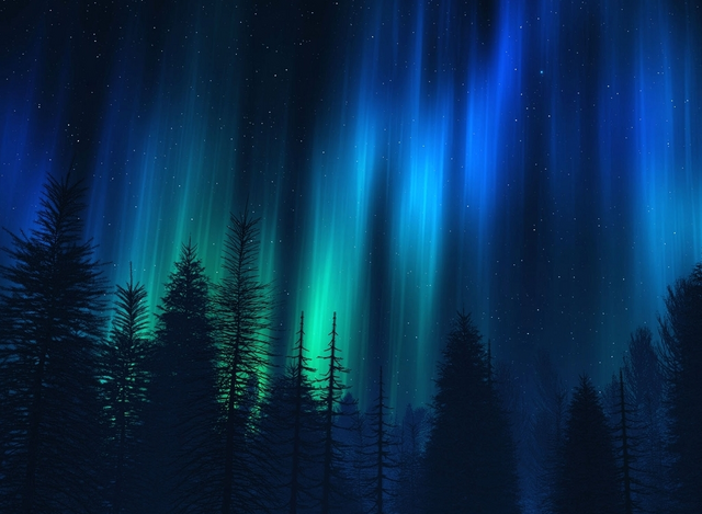 File:Dream Forest Sky Aurora Lights Night.png