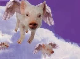 File:Pigssss.jpg