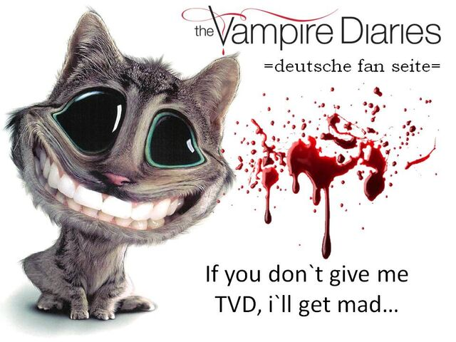 File:If you don`t give me TVD, i`ll.jpg