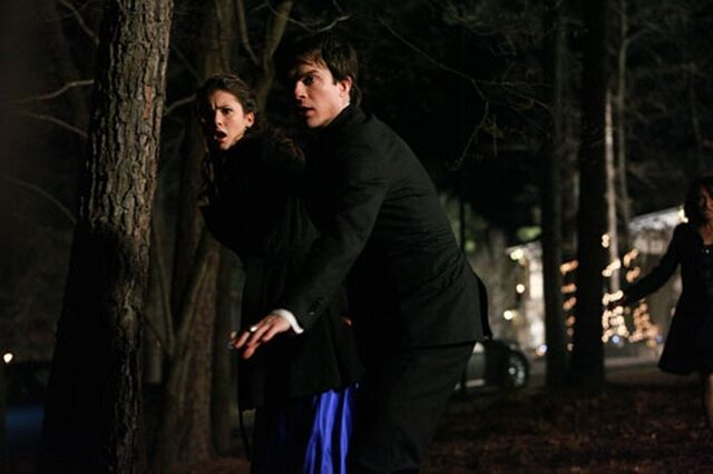 File:1-19-Miss-Mystic-Falls-the-vampire-diaries-20467142-1024-682.jpg