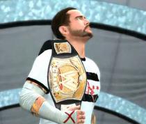 WWECMPunk