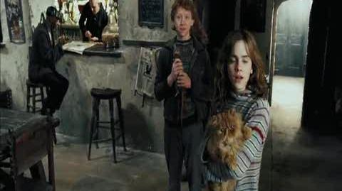Harry Potter and the Prisoner of Azkaban - Reuniting with Ron and Hermione