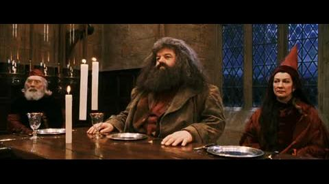 Harry Potter and the Sorcerer's Stone - Dumbledore's announcement