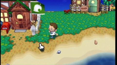 Animal Crossing City Folk (VG) (2008) - Wii