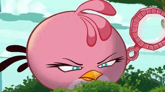 Angry Birds Seasons Meet the Pink Bird