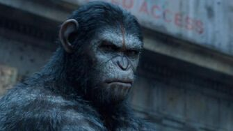 "Dawn of the Planet of the Apes - ""Intense"" TV Spot"