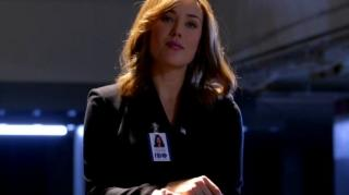The Blacklist Meet Reddington