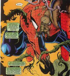 Spidermorphosis