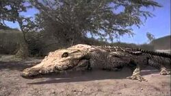 Crocodile (2000) Ending