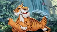 Msf jungle book cmi khan-01