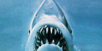 Great White Shark (Jaws)